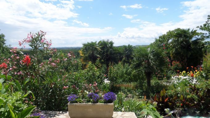 View from the terrace to the garden