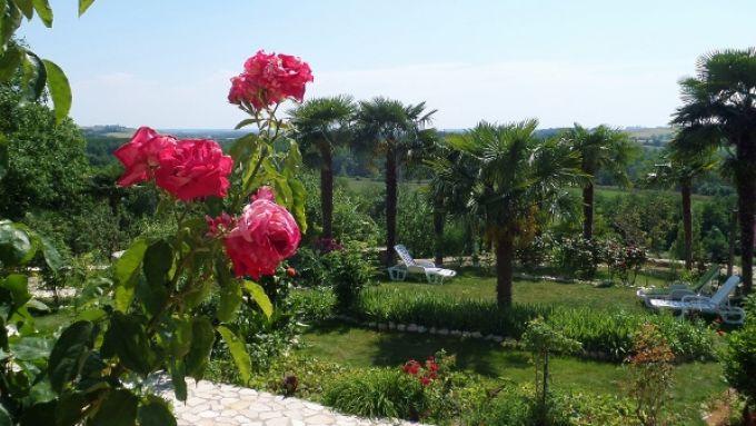 Le jardin coté repos !!